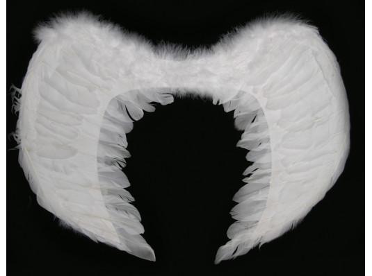 Крылья ангела 60 x 45 см купить в интернет магазине подарков ПраздникШоп