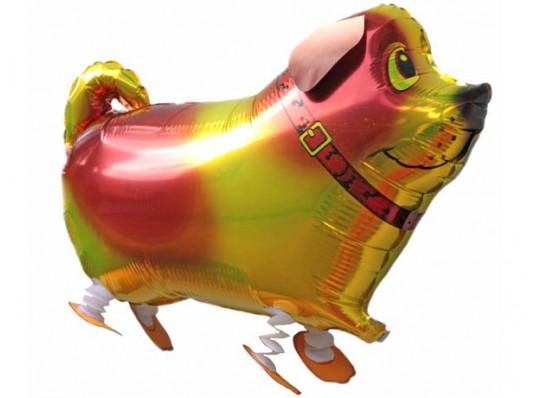 Собачка-ходячка, 2360 см купить в интернет магазине подарков ПраздникШоп