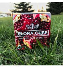 """Экокуб """"Flora Cube"""",  гранат купить в интернет магазине подарков ПраздникШоп"""