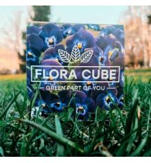"""Экокуб """"Flora Cube"""", фиалка купить в интернет магазине подарков ПраздникШоп"""